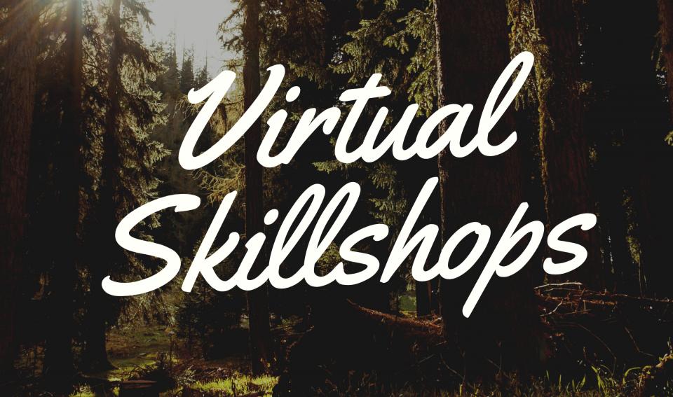 Virtual Skill Shops